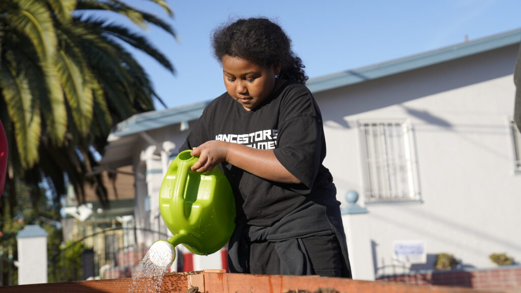 Image of child wearing a black shirt using a green watering can to water vegetables in planter barricades.