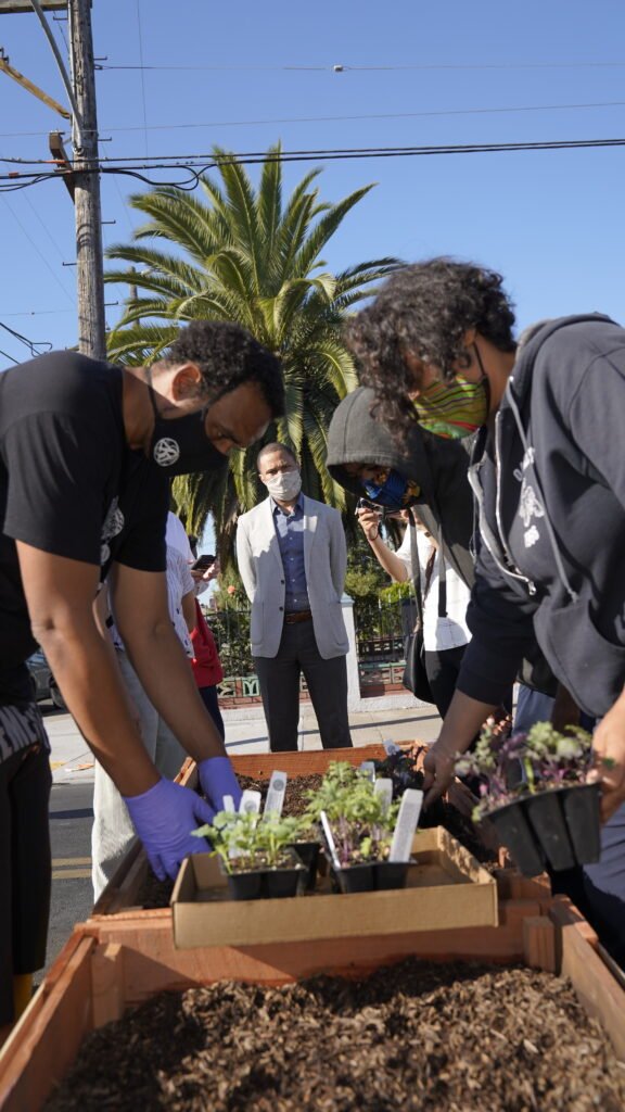 Image of people planting vegetables in planter barricades. A palm tree is visible in the background.